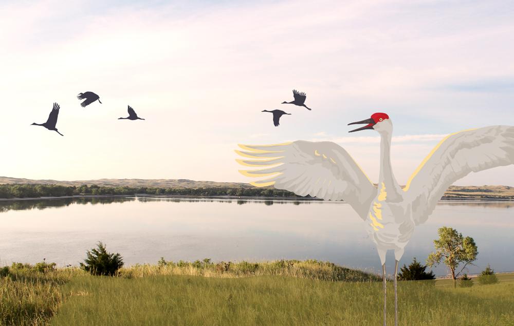 Crane-Poster-Feature
