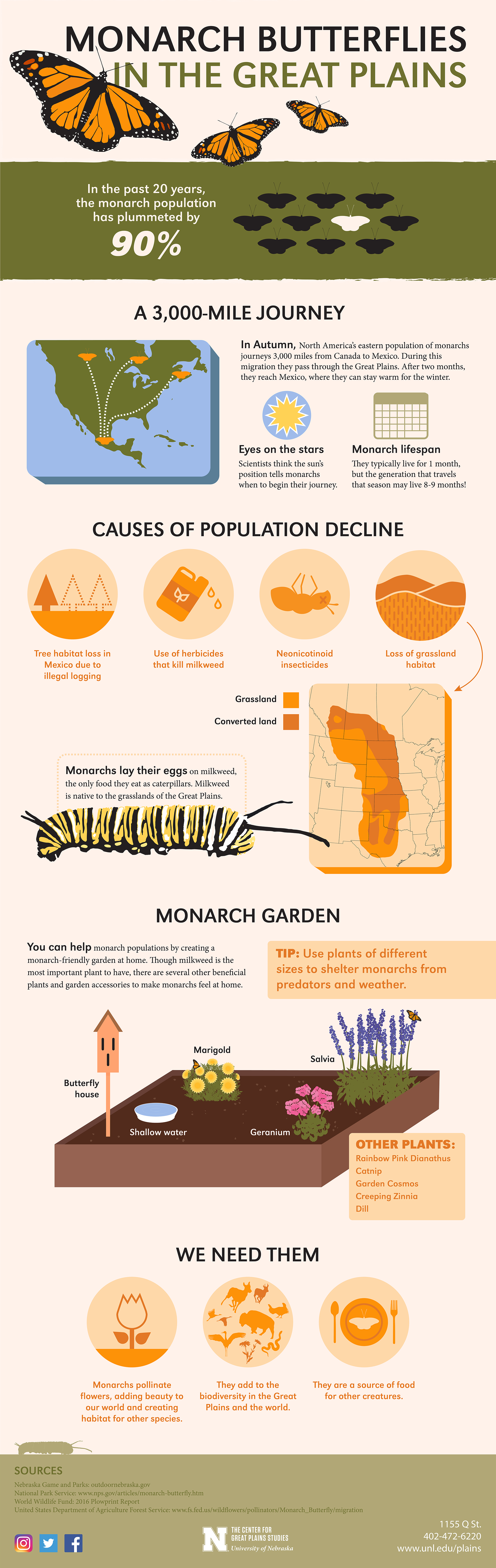 Monarchs in the Great Plains