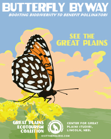 eco-butterfly-poster