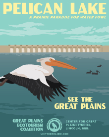 eco-pelicans-poster